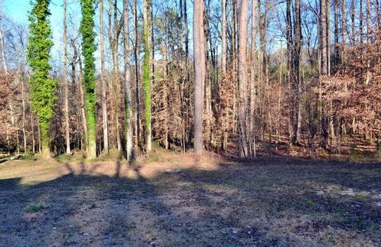 206 River Drive, Chesterfield, Chesterfield County, 29709, South Carolina, Home For Sale 9