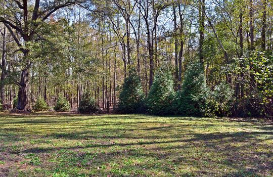 1804 Midway Road Cheraw SC 29520 Country Home Acreage For Sale (20)