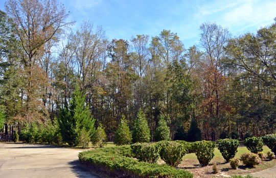 1804 Midway Road Cheraw SC 29520 Country Home Acreage For Sale (31)