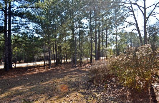 4907 Gurney Road Wallace SC Marlboro County 29596 Country Home with Acreage (4)