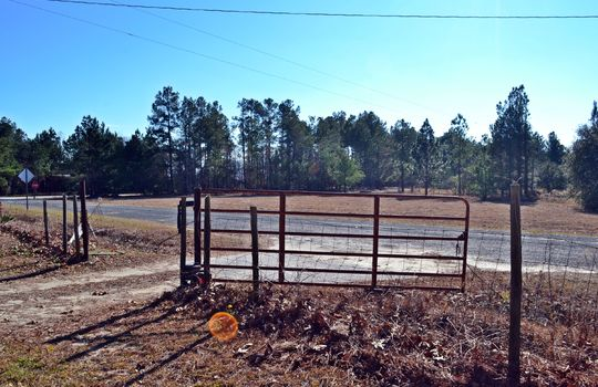 4907 Gurney Road Wallace SC Marlboro County 29596 Country Home with Acreage (5)