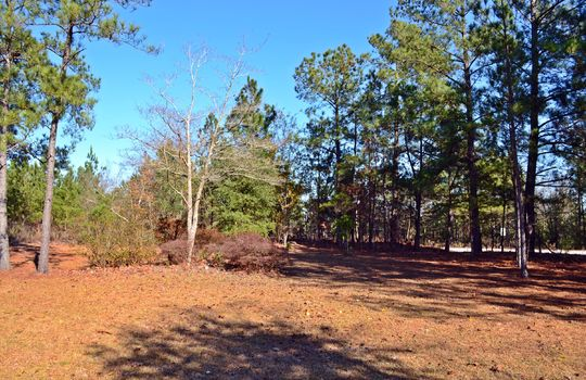4907 Gurney Road Wallace SC Marlboro County 29596 Country Home with Acreage (7)
