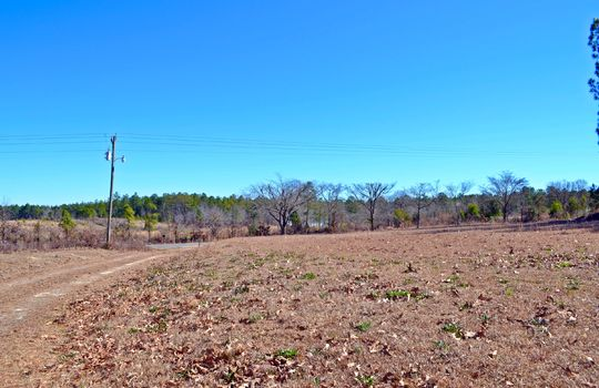 1858 Brown Springs Church Road Hartsville Chesterfield County SC 29550 Country Home with Acreage For Sale (12)