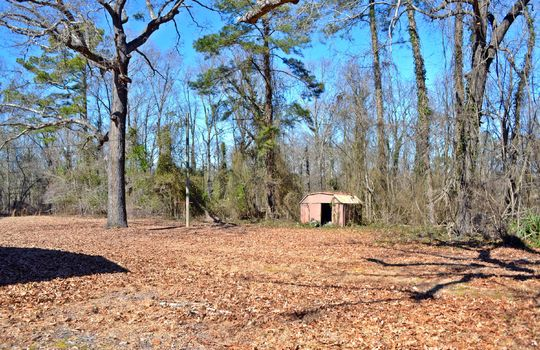 1858 Brown Springs Church Road Hartsville Chesterfield County SC 29550 Country Home with Acreage For Sale (14)