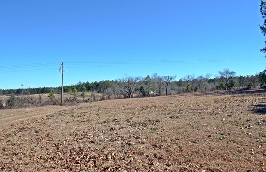 1858 Brown Springs Church Road Hartsville Chesterfield County SC 29550 Country Home with Acreage For Sale (7)