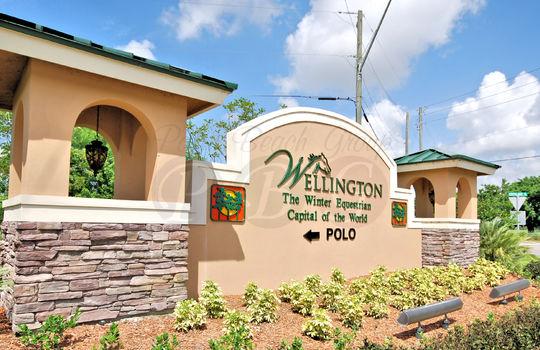 Wellington(Copy3)