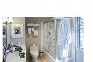 Common Bathroom Problems