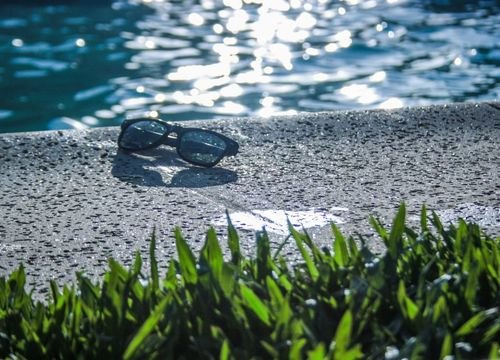 Swimming pool and sunglasses are common backyard sites in Plano, TX
