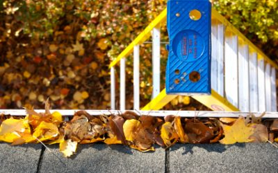 Fall House Cleaning: Chores to Do Now