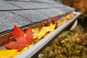 Be Wary of Fall Home Maintenance Scams