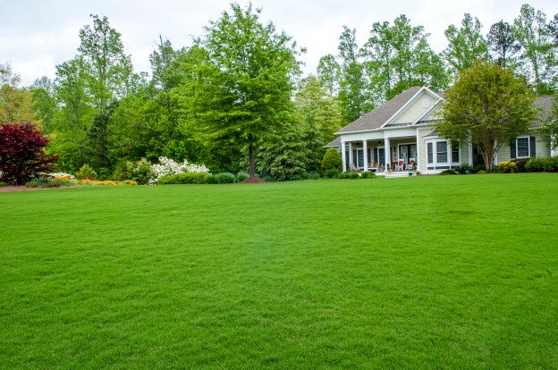 Tips for Reviving Your Lawn After Winter