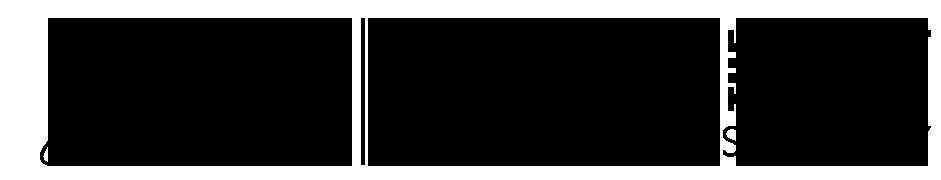 brian-kw-logo-black