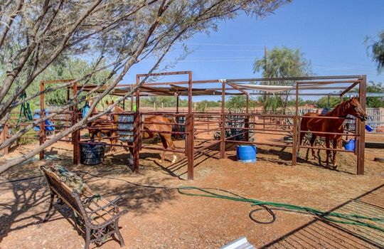 Back yard – 536 E Desert Ranch Rd – Fauss – BA