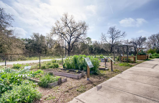 1601 Miriam Avenue Suite 300-large-030-020-Community Gardens-1500×1000-72dpi