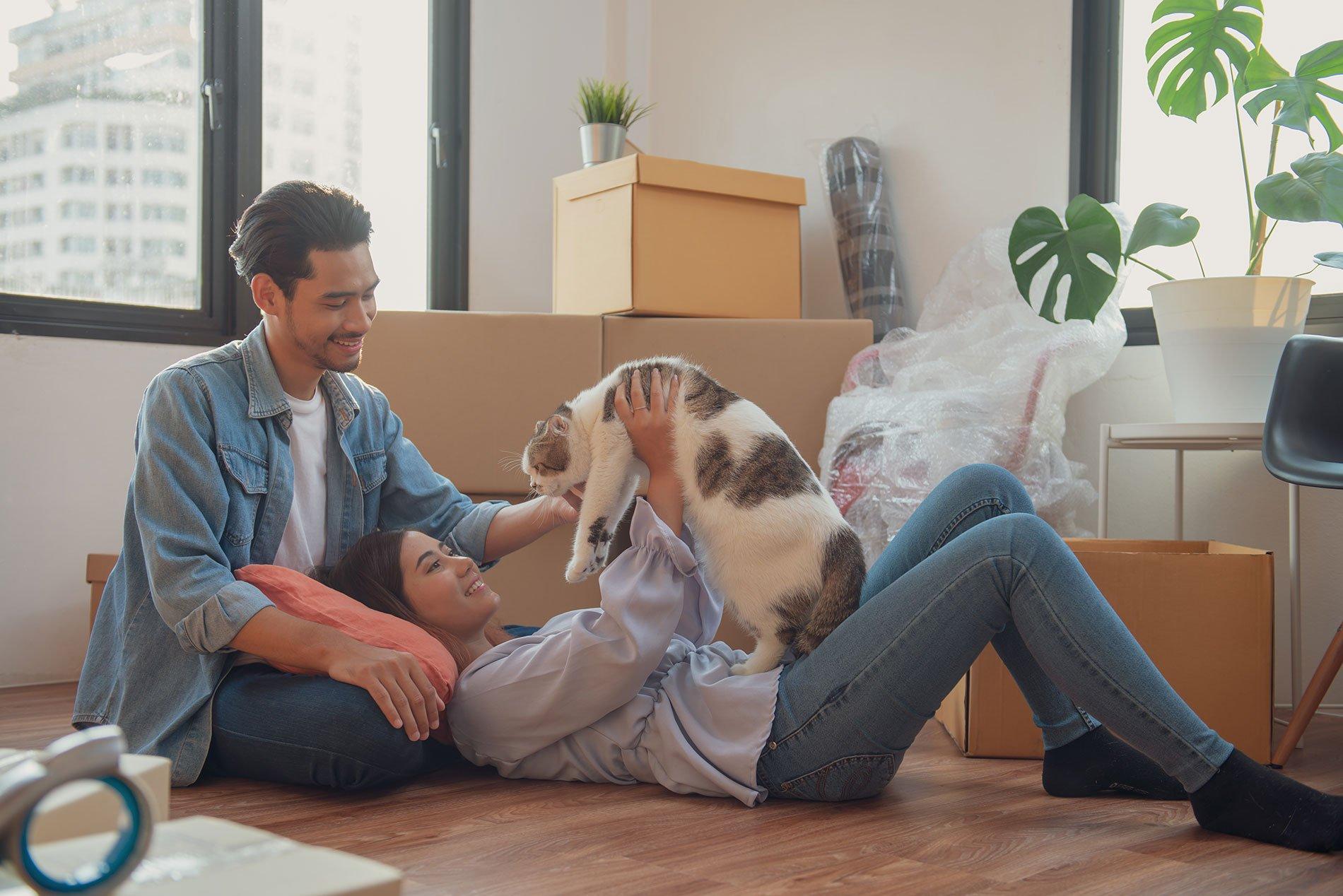 Pet Friendly Housing On Oahu 2019
