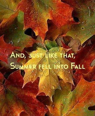 Happy Fall!!!