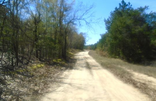 HWY 109 + WD Oliver Road, Ruby, Chesterfield County, 29741, SC, Land For Sale 1