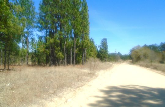 HWY 109 + WD Oliver Road, Ruby, Chesterfield County, 29741, SC, Land For Sale 2