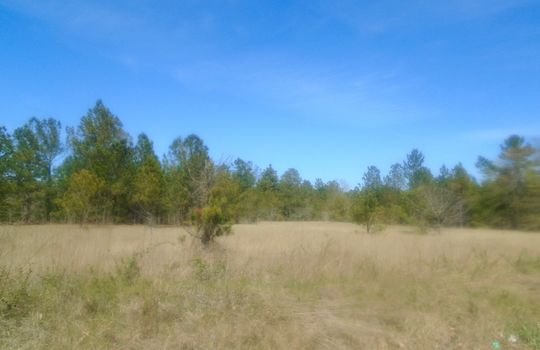 HWY 109 + WD Oliver Road, Ruby, Chesterfield County, 29741, SC, Land For Sale 3