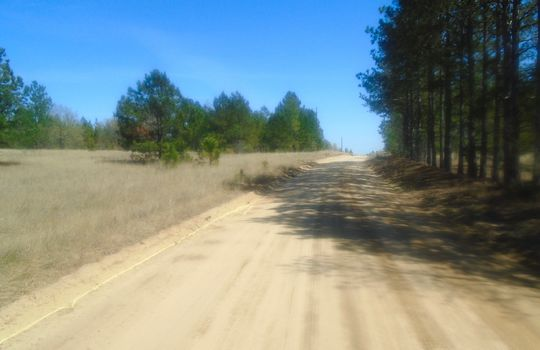 HWY 109 + WD Oliver Road, Ruby, Chesterfield County, 29741, SC, Land For Sale 5
