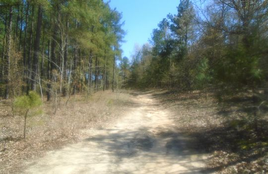 HWY 109 + WD Oliver Road, Ruby, Chesterfield County, 29741, SC, Land For Sale