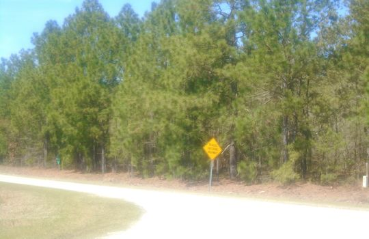 HWY 109 + WD Oliver Road, Ruby, Chesterfield County, 29741, SC, Land For Sale 8