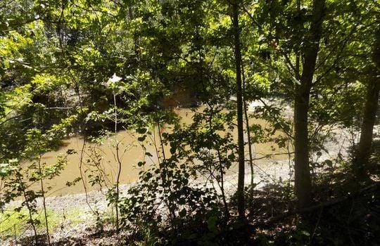 Sam Jones Road Patrick Chesterfield County South Carolina Hunting Land For Sale (14)