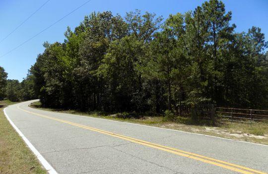 Sam Jones Road Patrick Chesterfield County South Carolina Hunting Land For Sale (6)