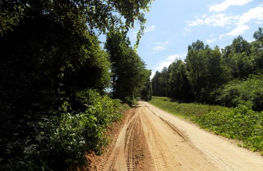 Teal Cemetery Road, Cheraw, Chesterfield County, South Carolina Land For Sale (4)