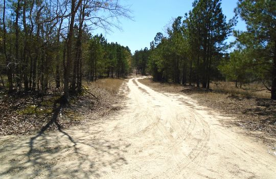 Teem Freeman Lane, Ruby, Chesterfield County, 29741, SC, Land for Sale