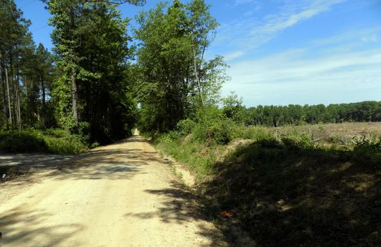 Teal Cemetery Road, Cheraw, Chesterfield County, South Carolina Land For Sale (7) – Copy