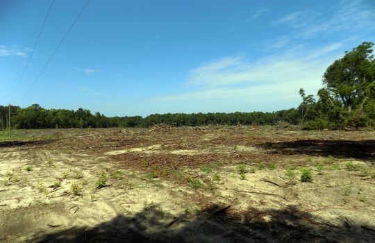 Teal Cemetery Road, Cheraw, Chesterfield County, South Carolina Land For Sale (8)