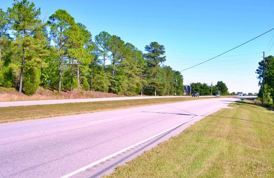 HWY 9, Cheraw, Chesterfield County, 29520, South Carolina, Land for Sale 1BB