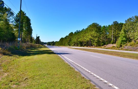 HWY 9, Cheraw, Chesterfield County, 29520, South Carolina, Land for Sale 9DD