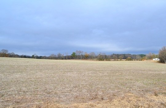 12450 HWY 151, Jefferson, Chesterfield County, 29718, SC, Farm for Sale 12