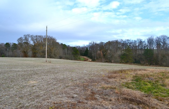 12450 HWY 151, Jefferson, Chesterfield County, 29718, SC, Farm for Sale 15