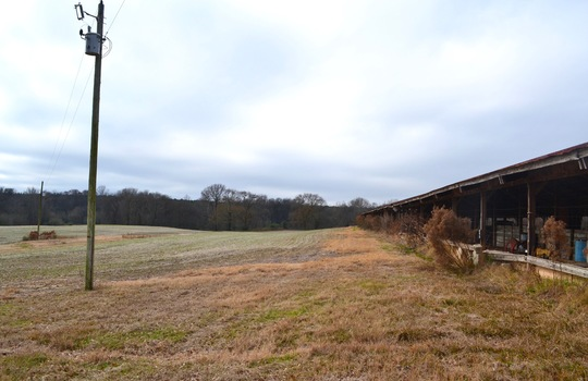 12450 HWY 151, Jefferson, Chesterfield County, 29718, SC, Farm for Sale 2