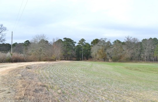 12450 HWY 151, Jefferson, Chesterfield County, 29718, SC, Farm for Sale 5