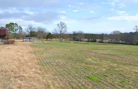 12450 HWY 151, Jefferson, Chesterfield County, 29718, SC, Farm for Sale