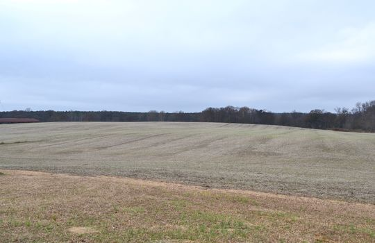 12450 HWY 151, Jefferson, Chesterfield County, 29718, SC, Farm for Sale 7