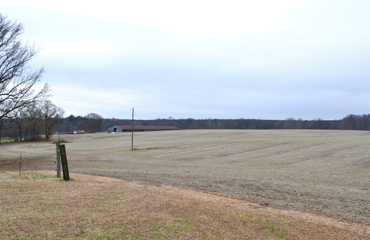 12450 HWY 151, Jefferson, Chesterfield County, 29718, SC, Farm for Sale 8