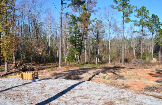 180 Evans Valley Road, Chesterfield, Chesterfield County, 29709, SC, Land for sale 10