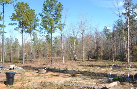 180 Evans Valley Road, Chesterfield, Chesterfield County, 29709, SC, Land for sale 13