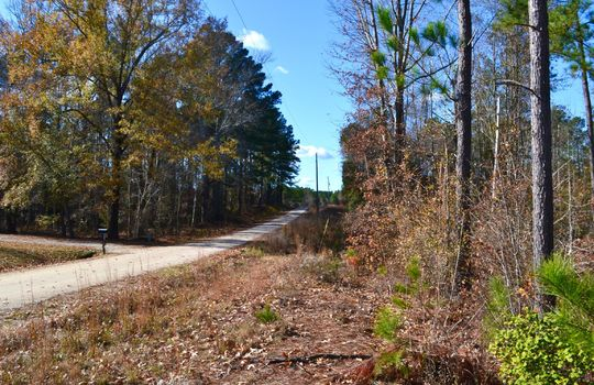 180 Evans Valley Road, Chesterfield, Chesterfield County, 29709, SC, Land for sale 15