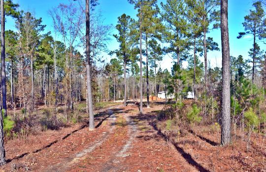 180 Evans Valley Road, Chesterfield, Chesterfield County, 29709, SC, Land for sale 17
