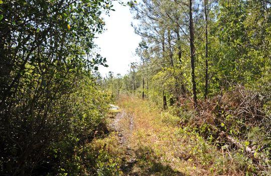 Antenna Farm Road SE Bolivia Brunswick County North Carolina Land For Sale 13
