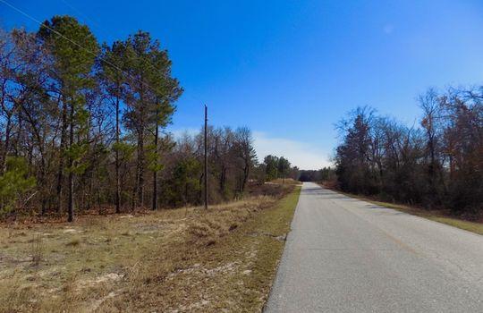 Arthur Hayes Road Jefferson SC Land For Sale (7)
