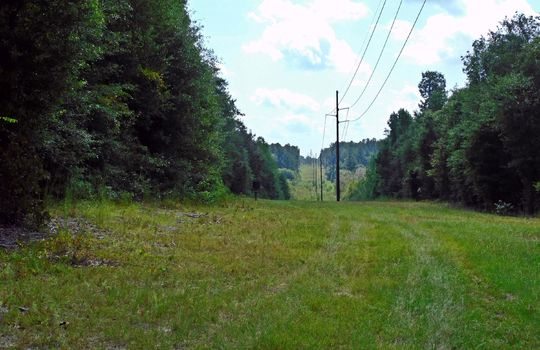 1226 Rollings Road Pageland SC 29728 Chesterfield County Acreage For Sale (21)