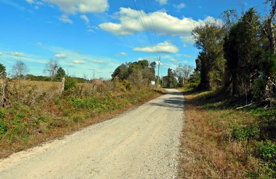 Redfearn Lane Chesterfield SC 29709 Timber Recreation Hunting Land (2)