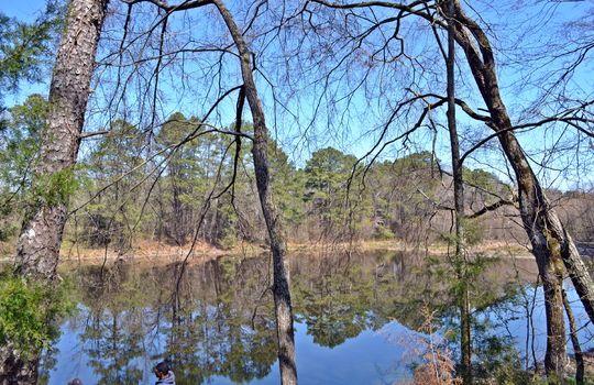 Hwy 151 Jefferson SC Lynches Riverfront Farm (38)